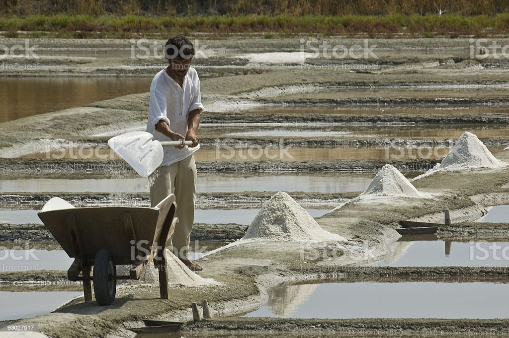 Saltfarmer harvesting the salt stock photo