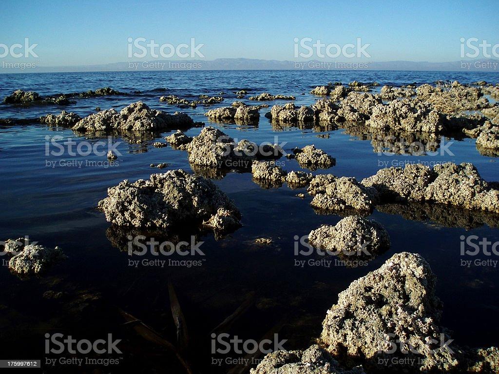 Salton Sea, California, United States royalty-free stock photo