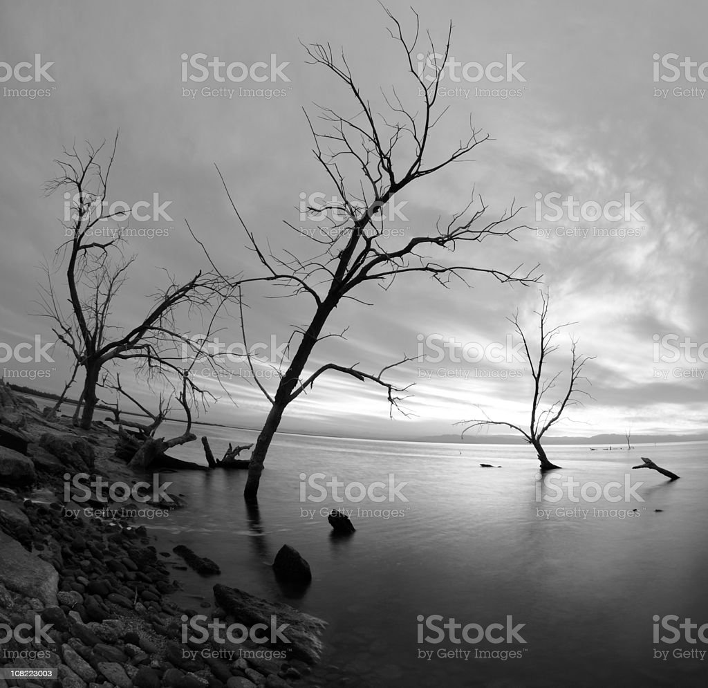 Salton Sea Distortion stock photo