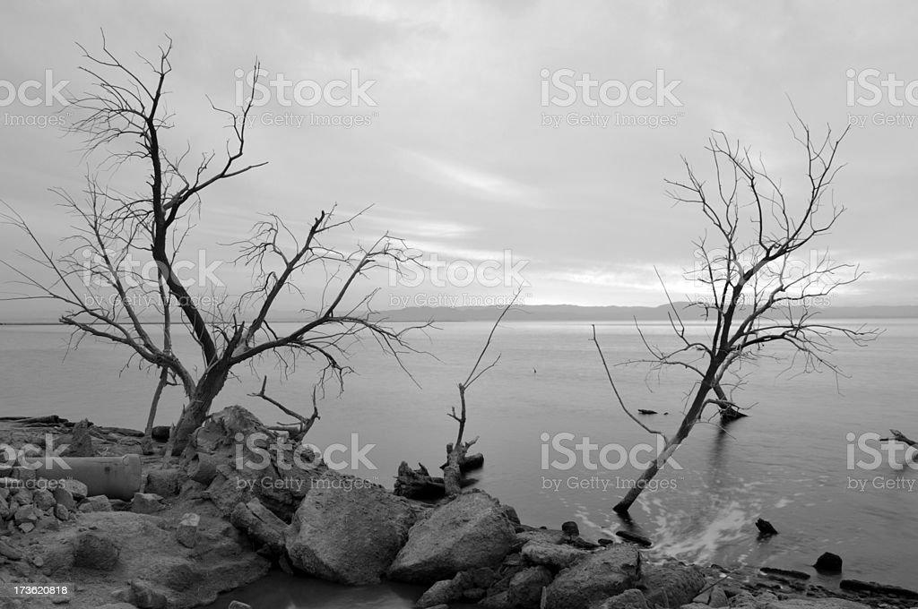 Salton Sea Runoff royalty-free stock photo