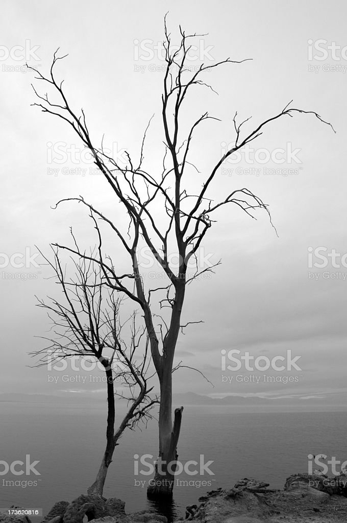 Salton Sea Scenic stock photo