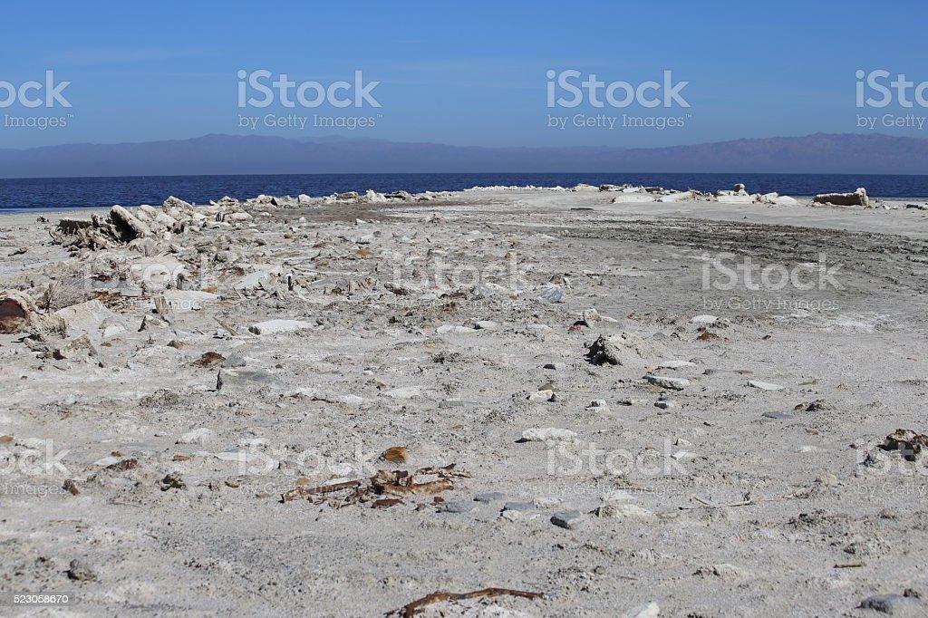 Salton Sea Shore stock photo