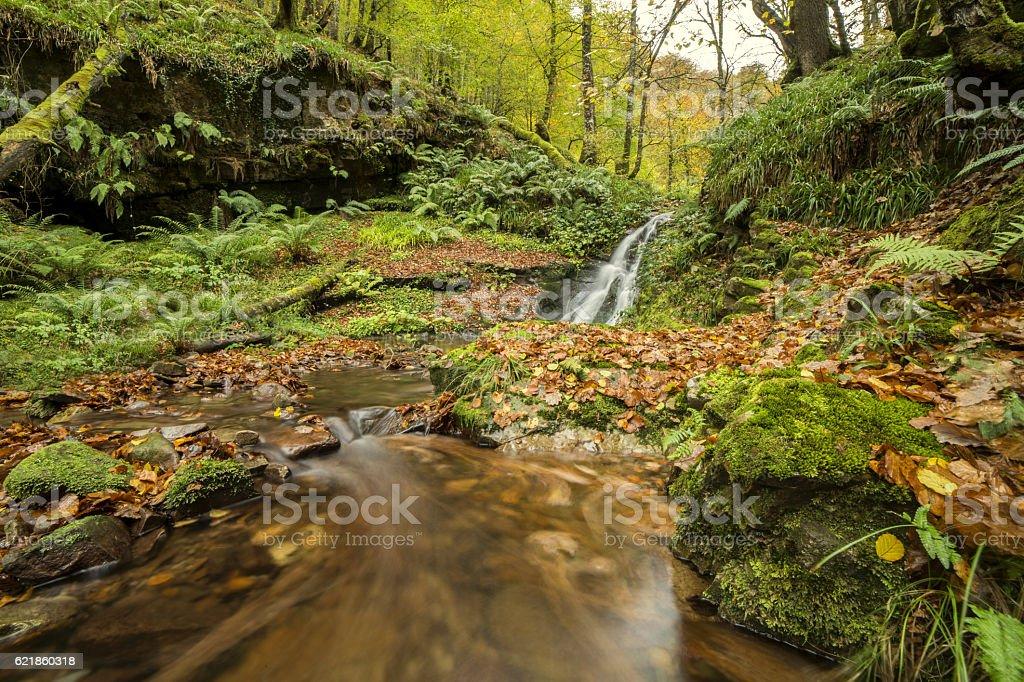 Saltos de agua stock photo
