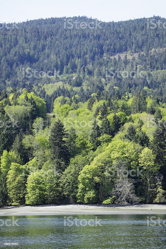 Saltspring Island stock photo