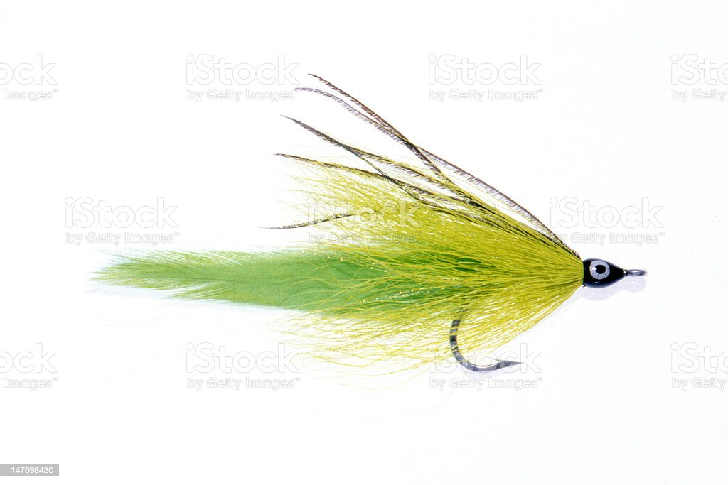 Saltwater Fishing Fly stock photo