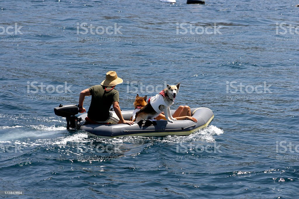 Salty Dog Dinghy royalty-free stock photo
