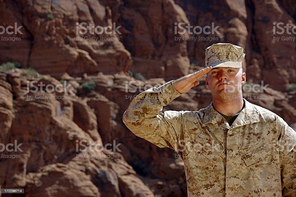 Salute royalty-free stock photo