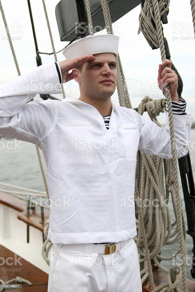 Salute. royalty-free stock photo