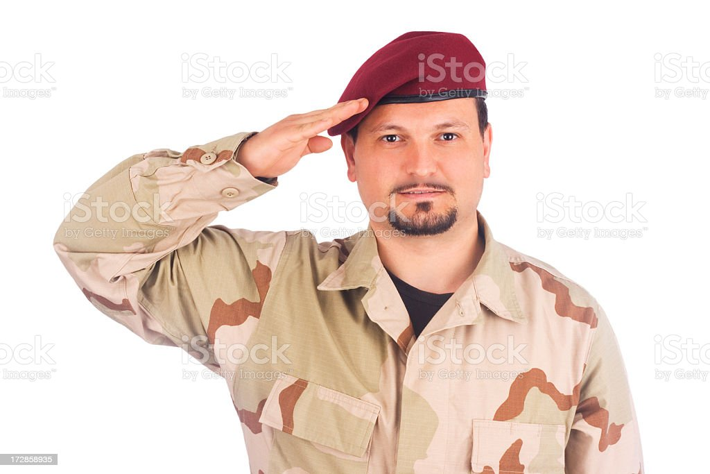 Saluting soldier royalty-free stock photo