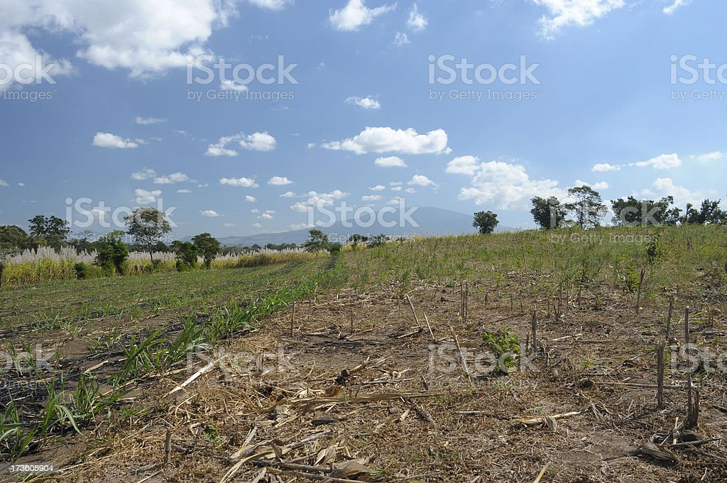 Salvadoran landscape stock photo