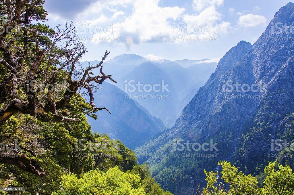 Samaria Canyon in Crete stock photo