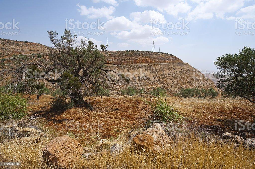Samaria royalty-free stock photo