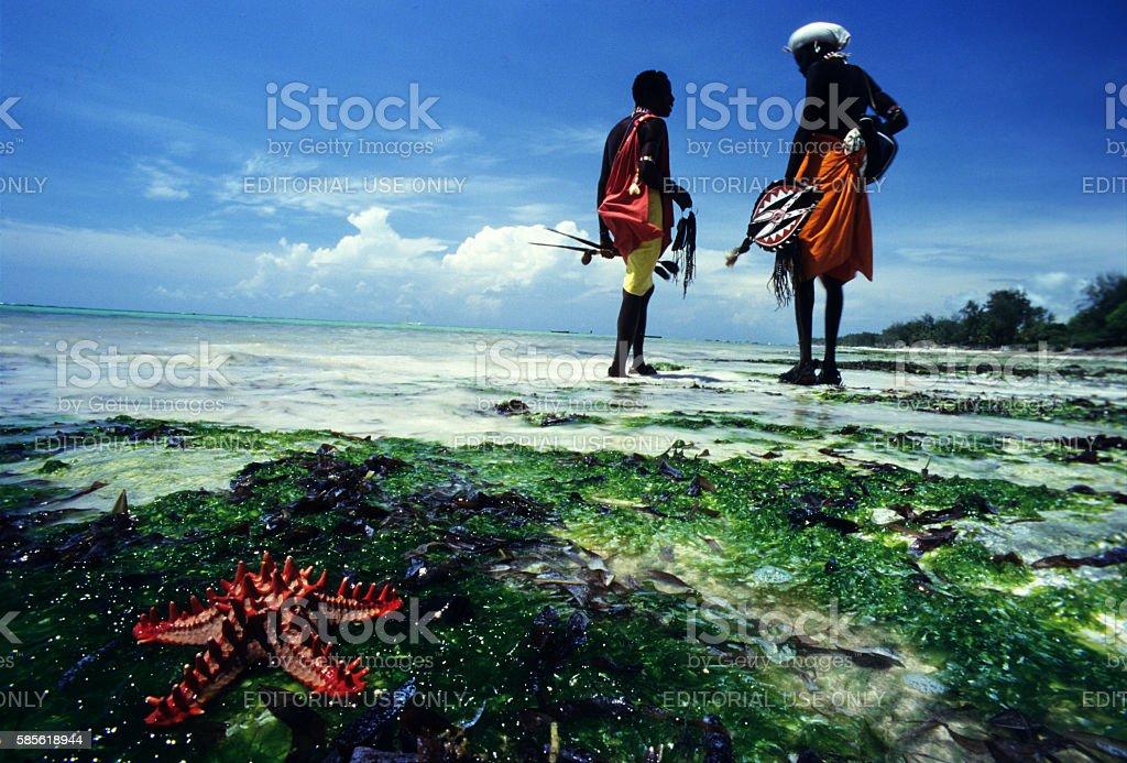 Samburu warriors near a starfish in Diani beach, Kenya stock photo