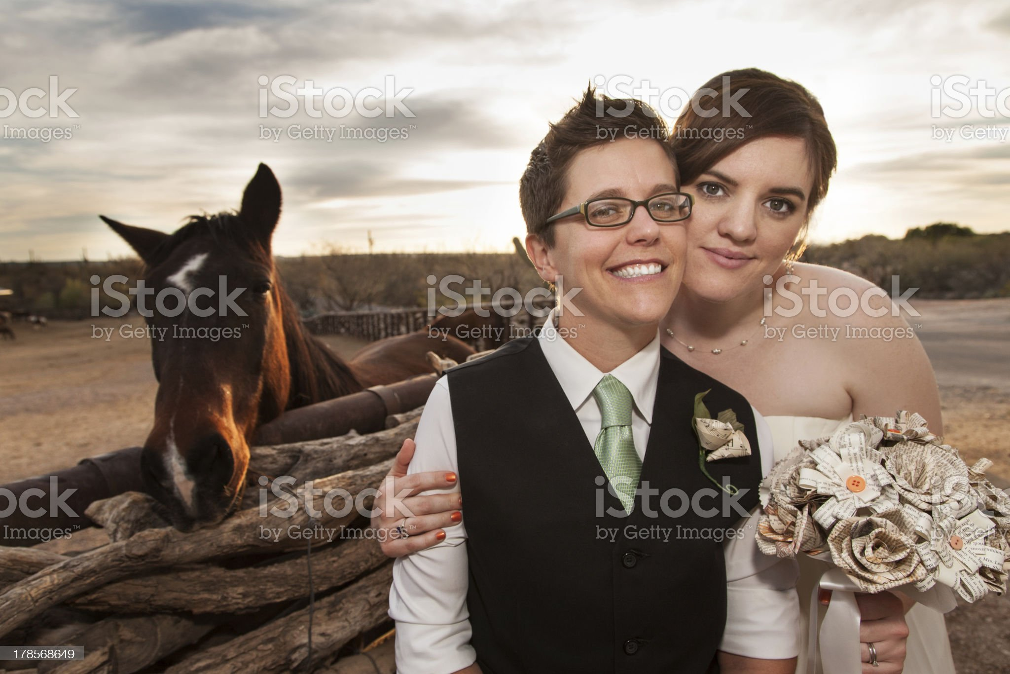 Same Sex Newlyweds with Horse royalty-free stock photo