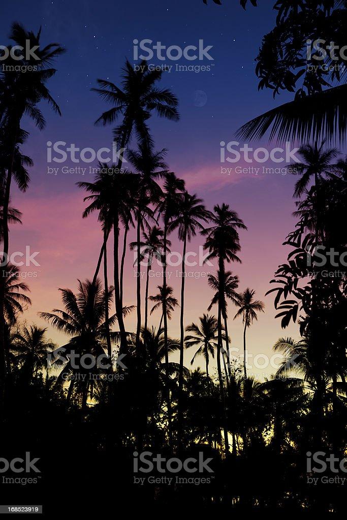 Samoan Twilight Moon stock photo