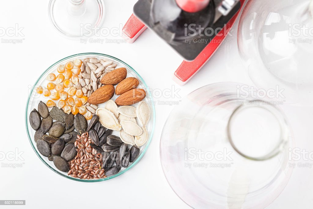 Sample Seeds in Test plate stock photo