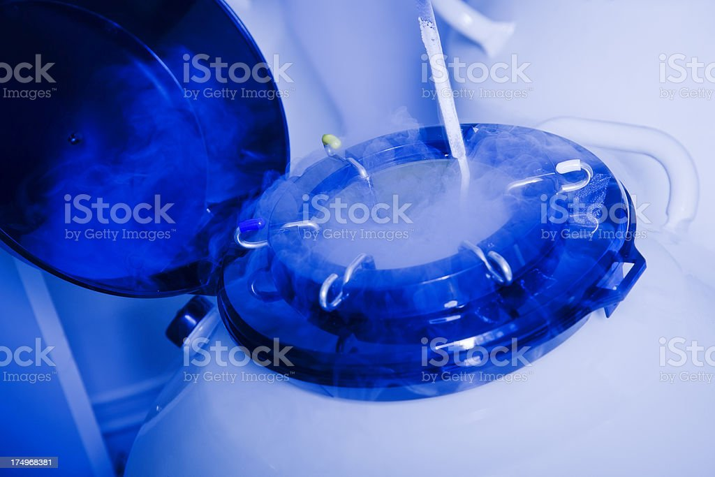 Sample Storage in test-tube laboratory royalty-free stock photo