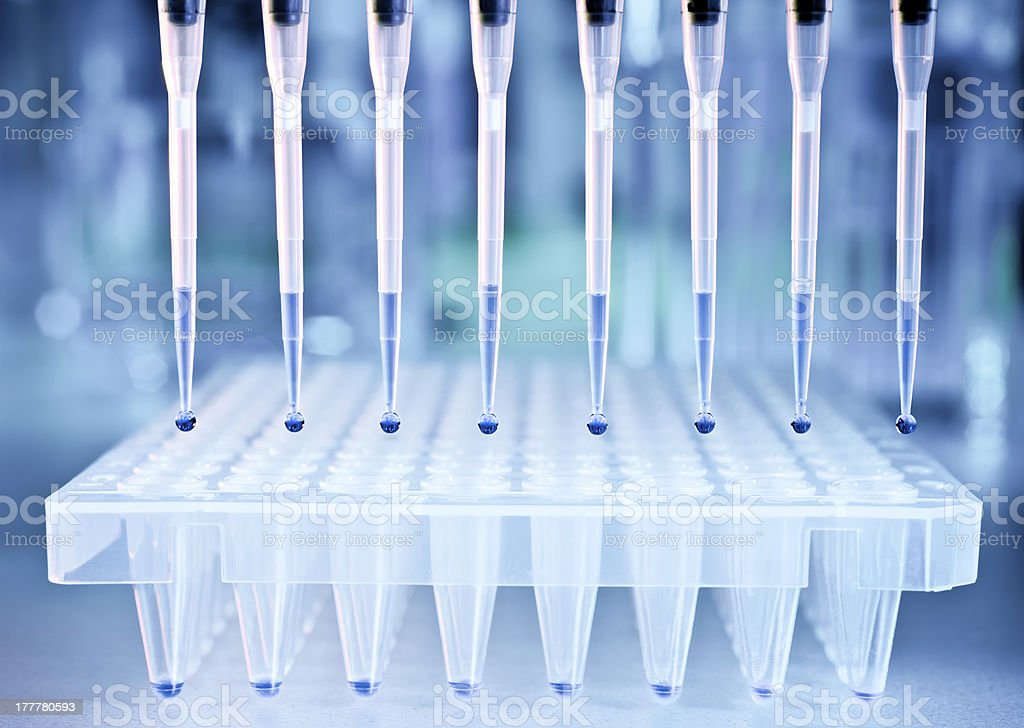 DNA samples and a plate for PCR analysis stock photo