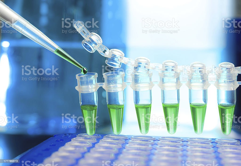 Samples for DNA amplification royalty-free stock photo