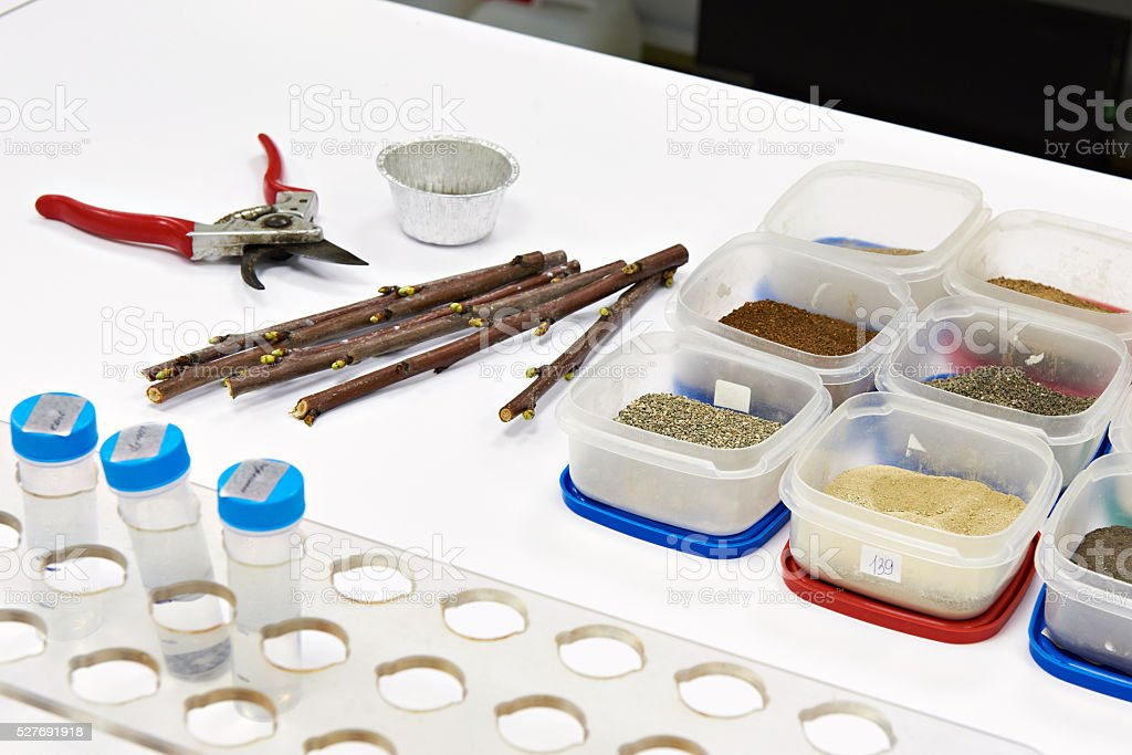 Samples for research in biochemical laboratory stock photo