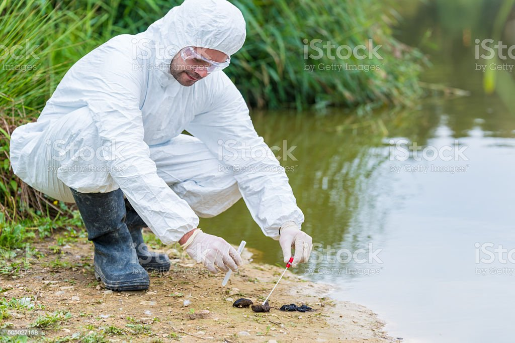 DNA sampling from animal feces stock photo