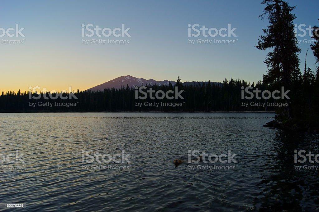 Samson Sunset Swim stock photo