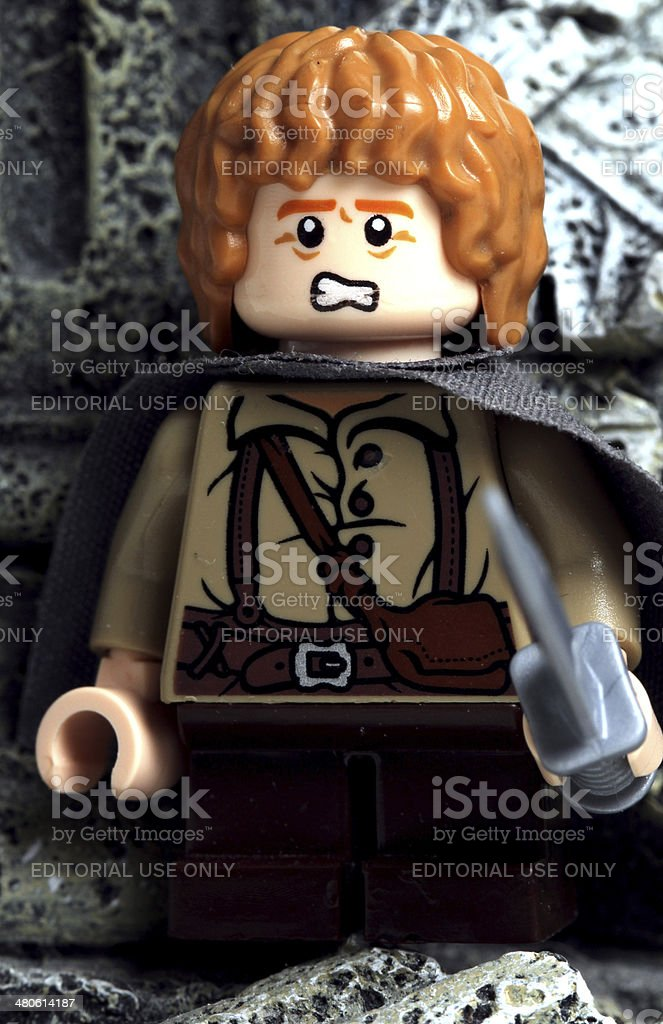 Samwise in Fear stock photo
