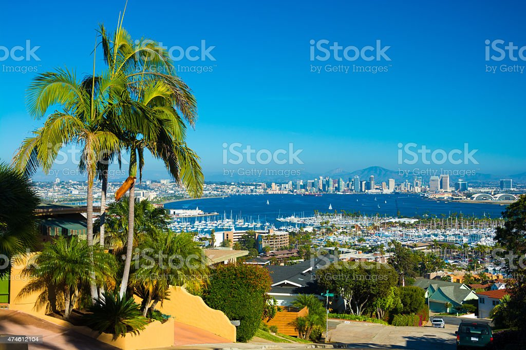 San Diego aerial view with palm tree stock photo