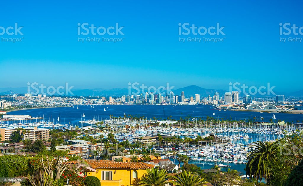 San Diego Downtown Aerial and Bay with Palm Trees and Marina stock photo