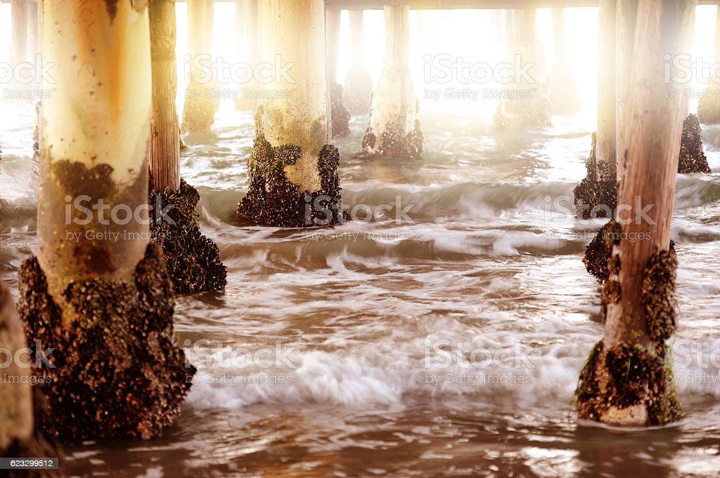 San Diego Pier, underside, sundawn stock photo