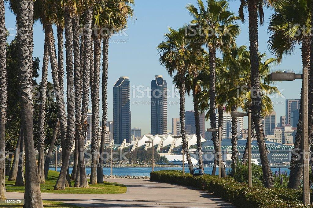 San Diego skyline and palm trees scene stock photo