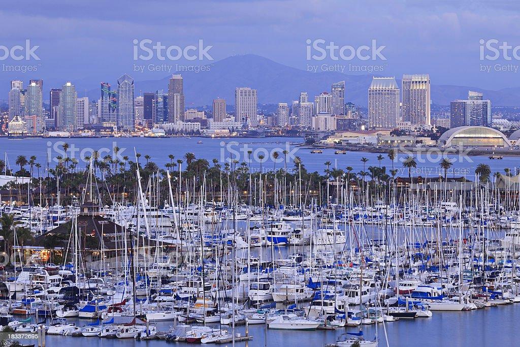 San Diego Skyline at Night royalty-free stock photo