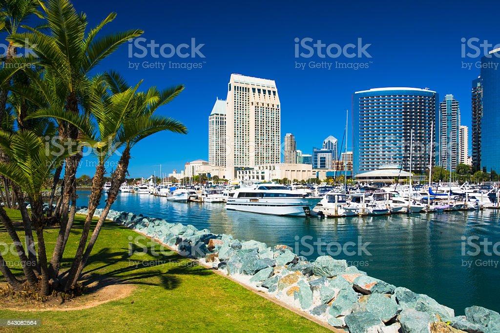 San Diego skyline, Marina, and Park with Palm Trees stock photo