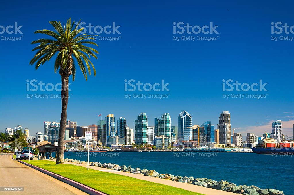 San Diego skyline with Palm Tree, Bay, and Blue Sky stock photo