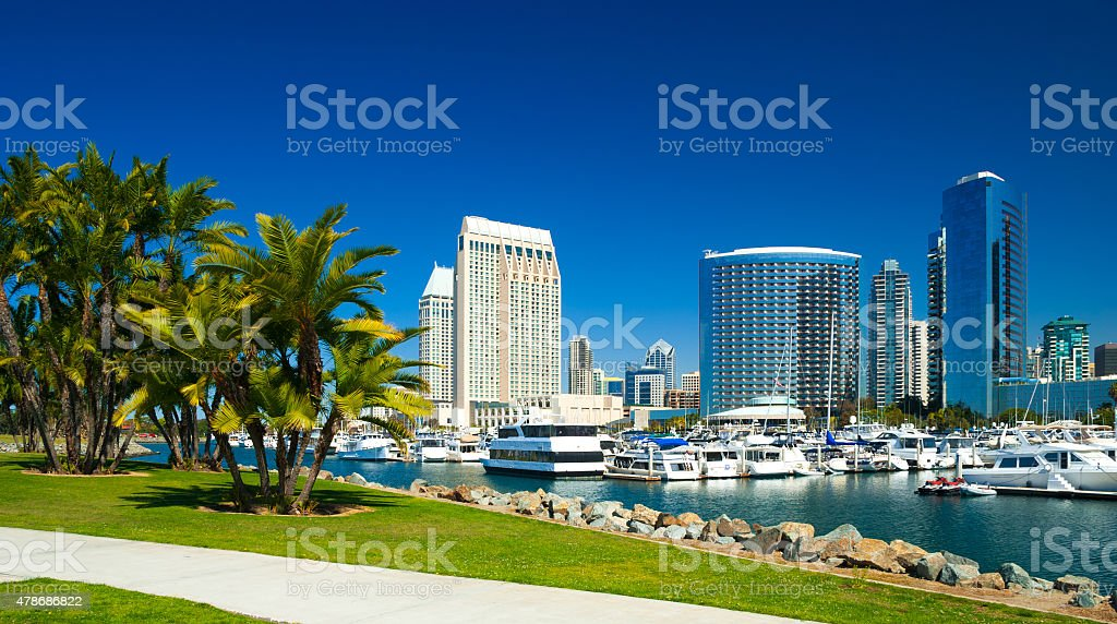 San Diego skyline with palm trees and marina stock photo