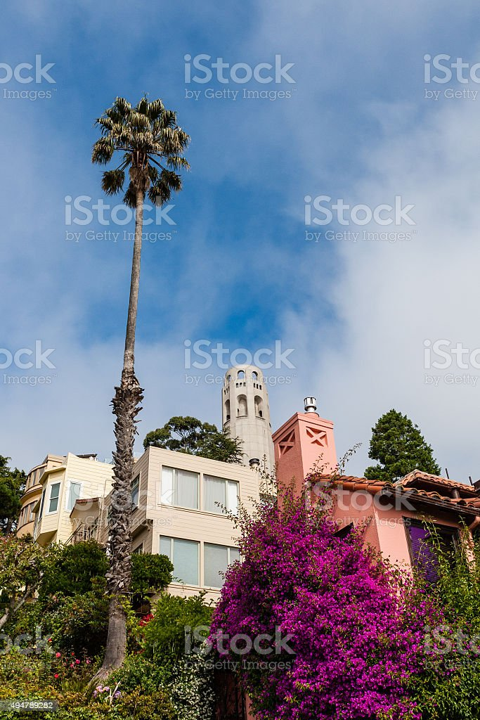 San Francisco cityscape - Coit Tower. stock photo