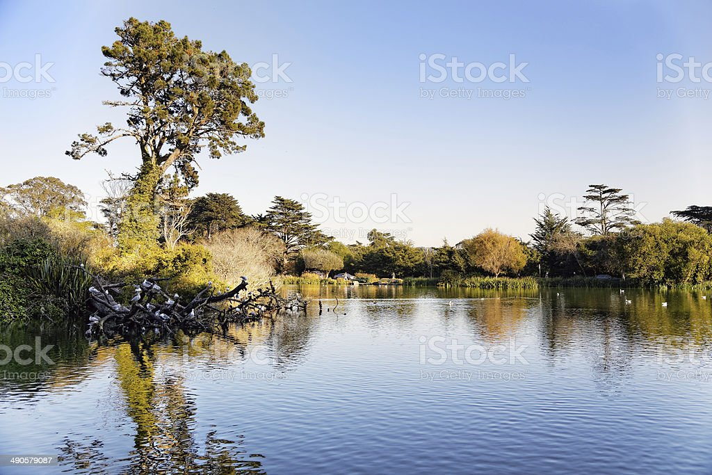 San Francisco Golden Gate Park royalty-free stock photo