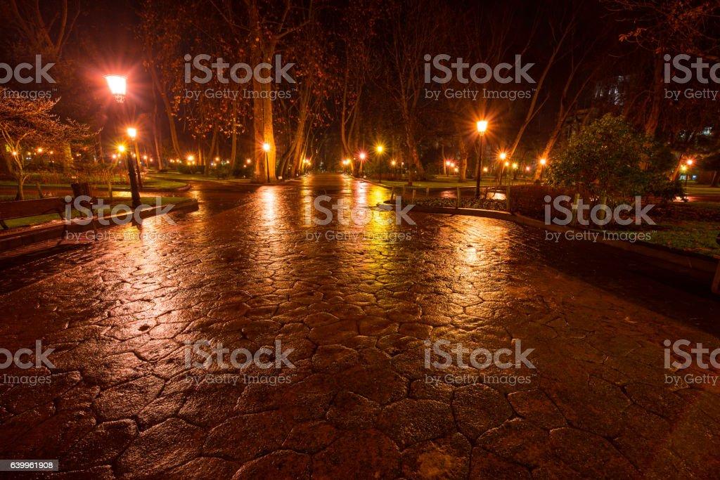 San Francisco park at night. Oviedo stock photo