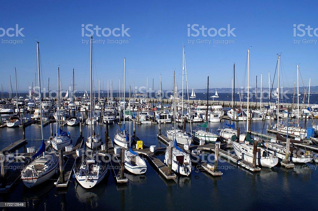 San Francisco Sailboats royalty-free stock photo