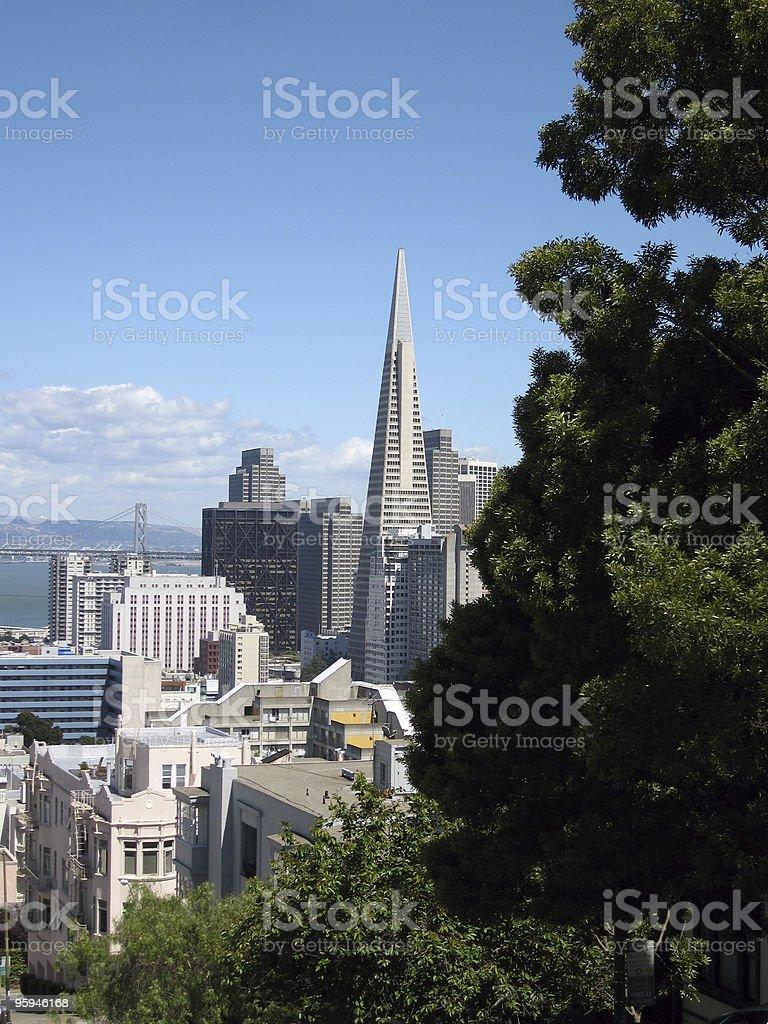 San Francisco Skyline Vertical royalty-free stock photo