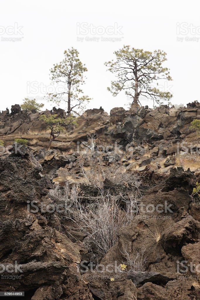 San Francisco Volcanic Landscape stock photo