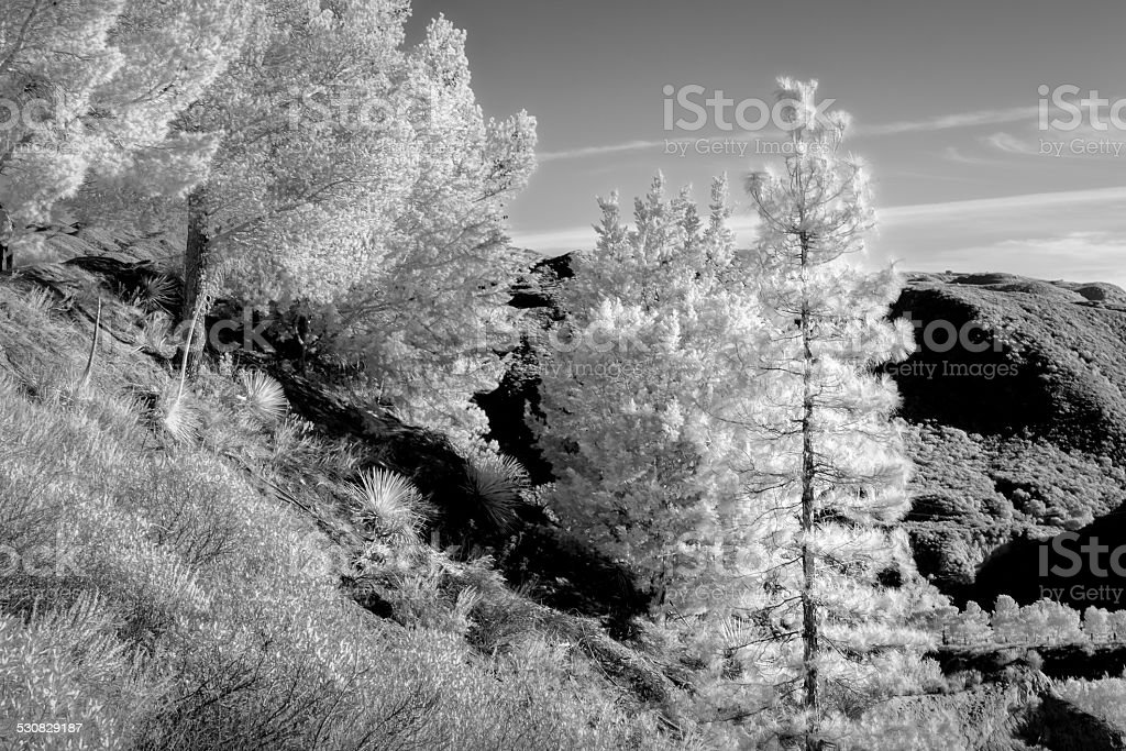San Gabriel Mountains in Infrared Black and White stock photo