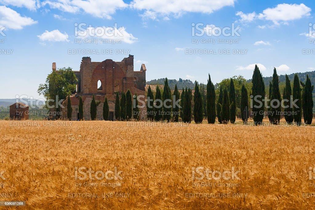 San Galgano abbey ruins in Tuscany, Italy stock photo