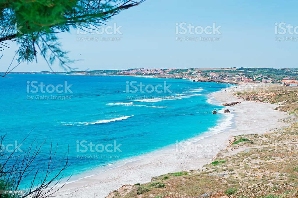 San Giovanni and pines royalty-free stock photo