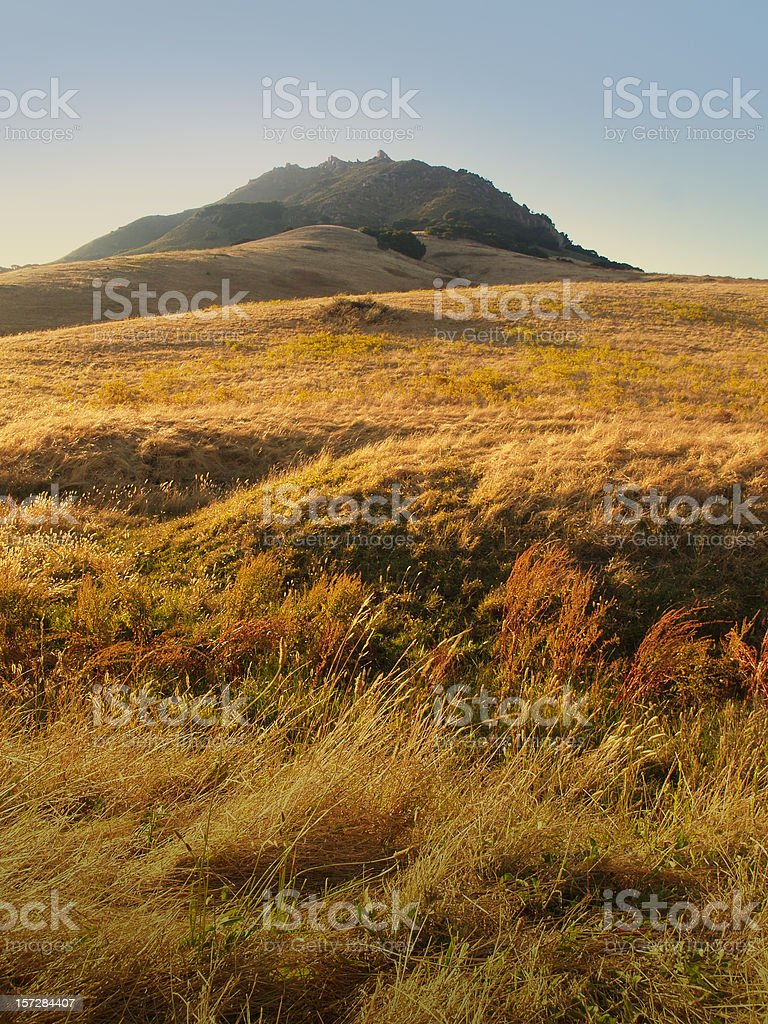San Luis Obispo Rolling Hills with Tall Grass stock photo