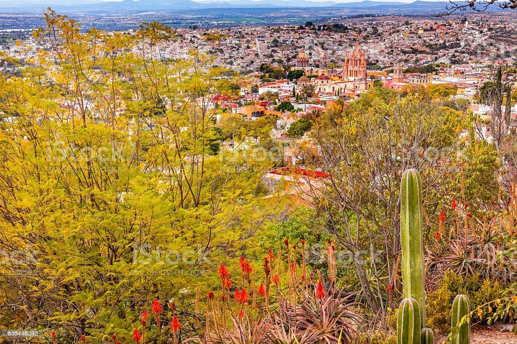 San Miguel de Allende Mexico Miramar Overlook Cactus Parroquia stock photo