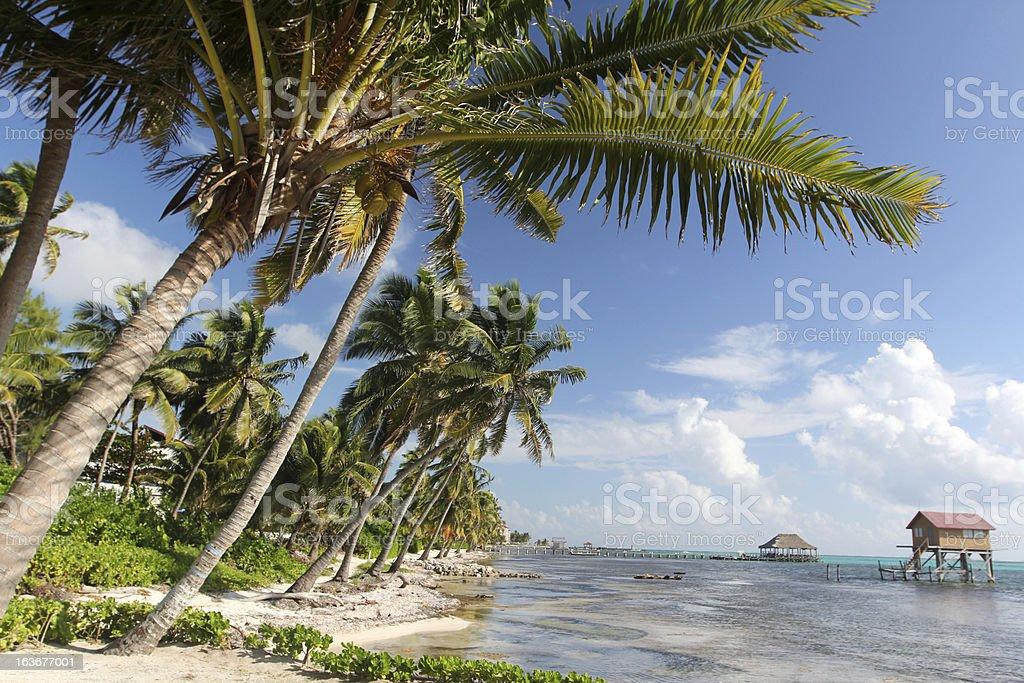 San Pedro Belize stock photo