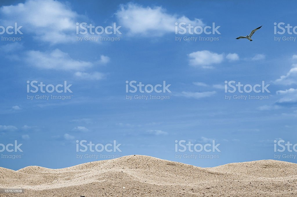 Sand Against Sky With Seagull royalty-free stock photo