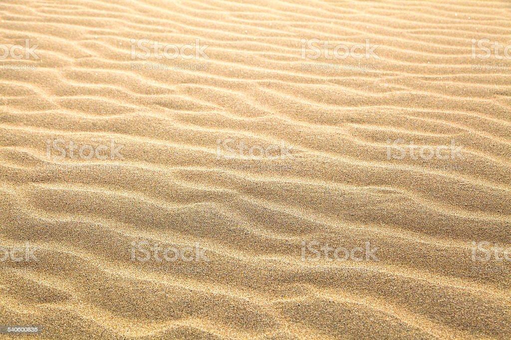 Sand and Beach stock photo