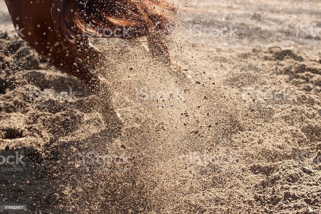 Sand and dust behind horse hooves royalty-free stock photo